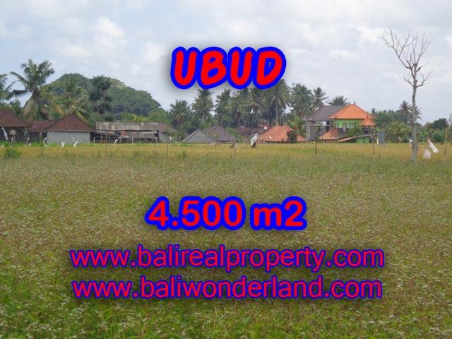 Tanah di Ubud dijual 45 Are view sawah terasering di Dekat sentral Ubud TJUB320