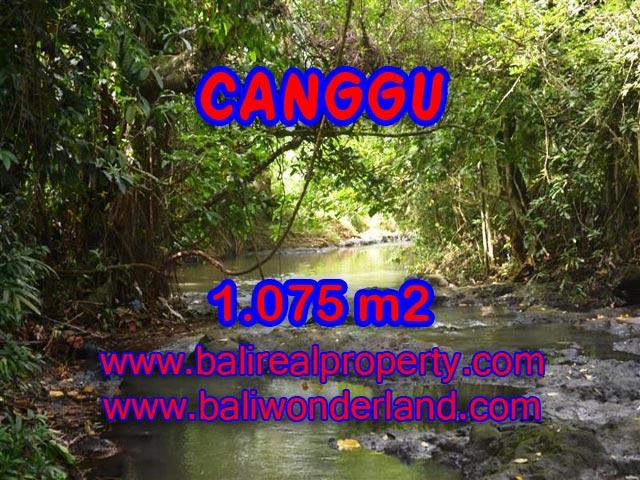Tanah dijual di Canggu Bali 10.75 Are di Canggu Pererenan