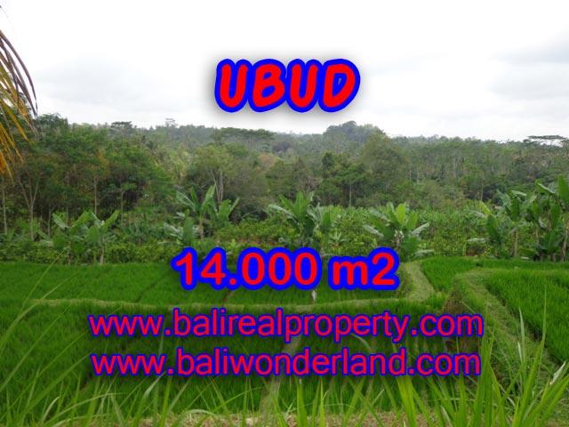 Jual tanah di Ubud 140 Are View sawah, hutan dan sungai di Ubud Payangan