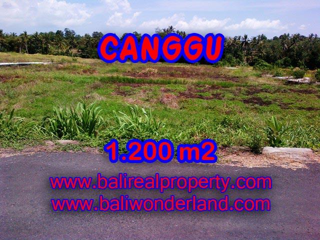Tanah di Canggu dijual 1,200 m2 di Tumbak Bayuh