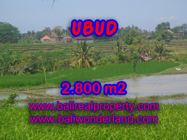 Tanah dijual di Bali 2.800 m2 view gunung dan sawah di Dekat sentral Ubud