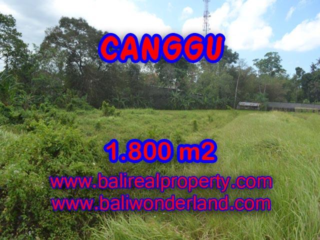 Tanah dijual di Bali 18 Are di Canggu Batu Bolong