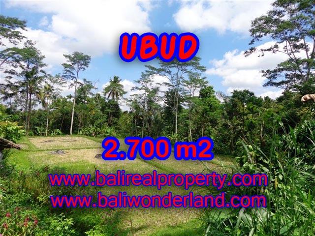 Tanah di Ubud Bali dijual TJUB305 view sawah dan hutan di Ubud Tampak Siring