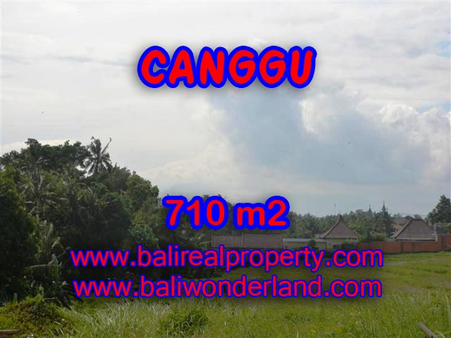 Jual tanah di Bali 710 m2 view sawah dan sungai di Canggu Brawa
