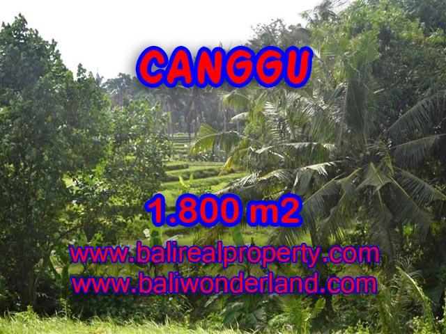 Tanah di Bali dijual 1.800 m2 di canggu brawa