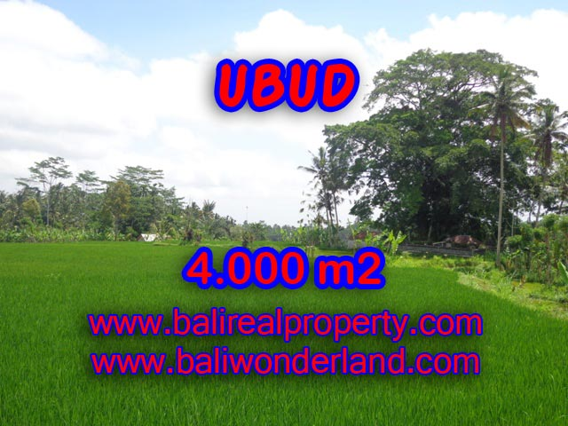 Tanah di Ubud dijual TJUB327 view sawah dan gunung di Ubud Tegalalang