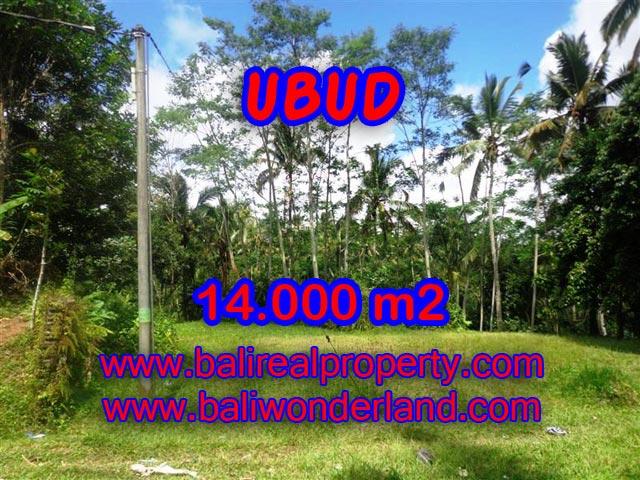 Jual tanah di Bali 140 Are view alami dekat sungai di Ubud Payangan