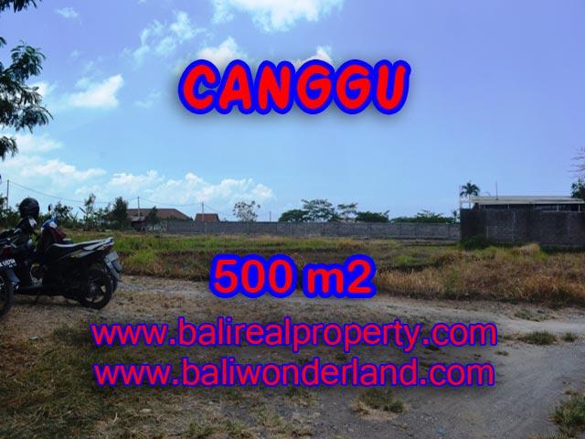 Tanah dijual di Canggu 5 Are View sawah di Batu Bolong Bali