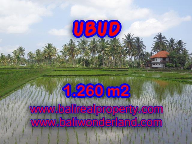 Jual tanah di Ubud Bali TJUB328