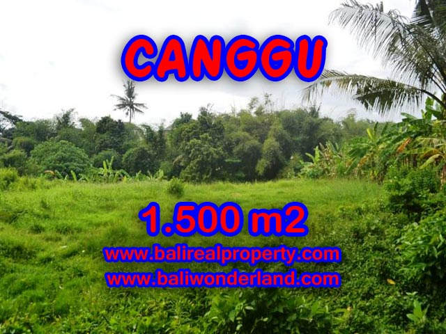 Tanah dijual di Canggu 1,500 m2 dekat sungai di Canggu pererenan