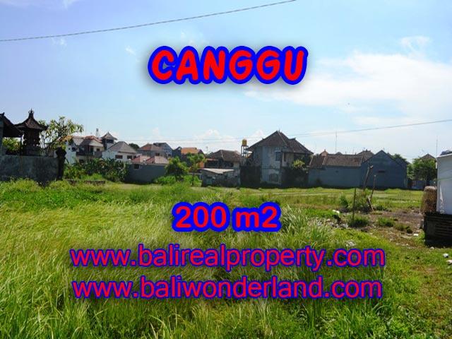 Jual tanah di Bali 200 m2 view sawah di Canggu Brawa