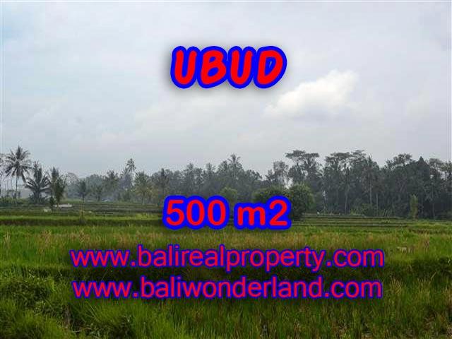 Investasi Properti di Bali - Murah ! Tanah di Ubud Bali Dijual TJUB363