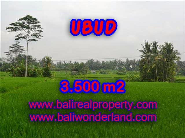 MURAH ! TANAH DIJUAL DI UBUD BALI TJUB361 - INVESTASI PROPERTY DI BALI