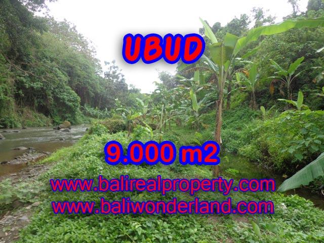 Tanah dijual di Ubud 90 Are view sawah dan tebing di Dekat sentral Ubud Bali