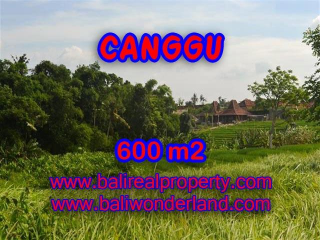 DIJUAL MURAH TANAH DI CANGGU BALI TJCG130 - PELUANG INVESTASI PROPERTY DI BALI