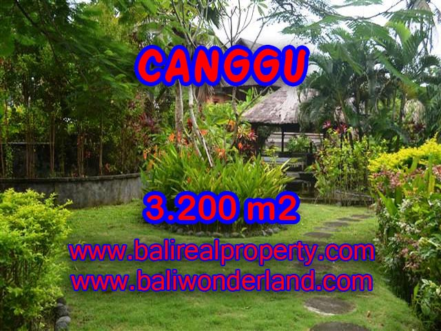 DIJUAL TANAH MURAH DI CANGGU BALI TJCG129