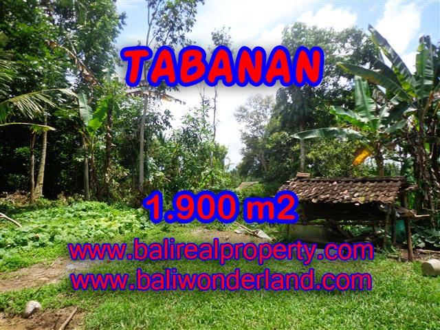 TANAH DI BALI, MURAH DI TABANAN DIJUAL TJTB091 - INVESTASI PROPERTY DI BALI