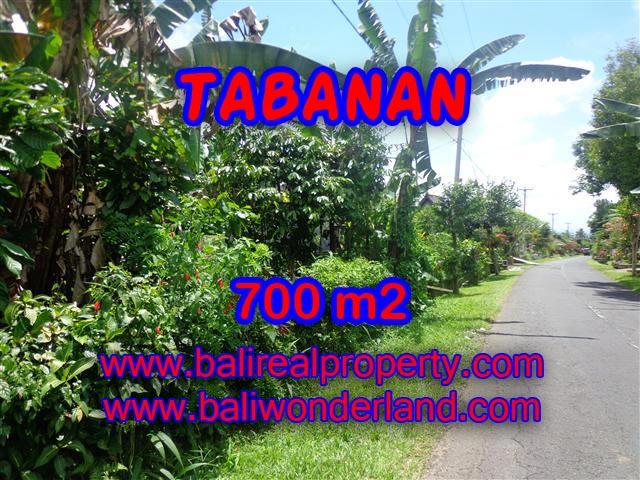 JUAL TANAH DI TABANAN BALI MURAH RP 700.000 / M2 - TJTB090