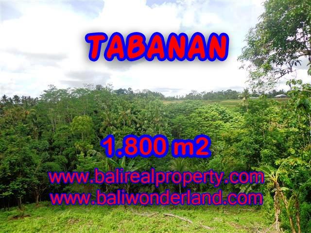 TANAH MURAH DIJUAL DI TABANAN BALI TJTB088