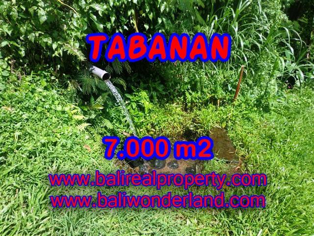 TANAH DI TABANAN BALI DIJUAL TJTB089 - PELUANG INVESTASI PROPERTY DI BALI