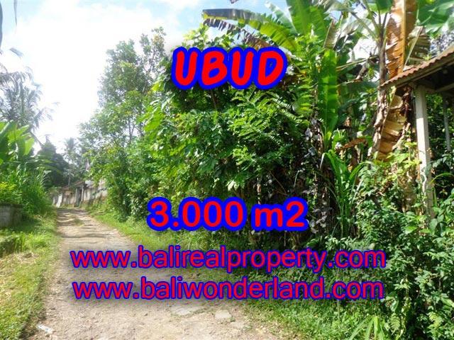 Tanah di Bali dijual murah 3.000 m2 di Ubud Payangan