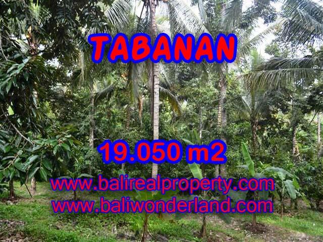 TANAH DIJUAL DI BALI, MURAH DI TABANAN RP 200.000 / M2 - TJTB092 - INVESTASI PROPERTY DI BALI