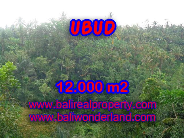 Tanah di Ubud Bali dijual view tebing dan sungai murah di Ubud Payangan