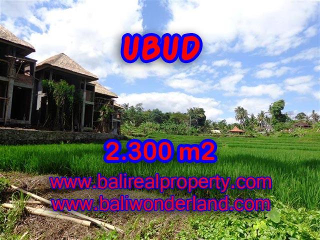 Jual tanah di Ubud view sawah dan sungai di Dekat Ubud Center Bali