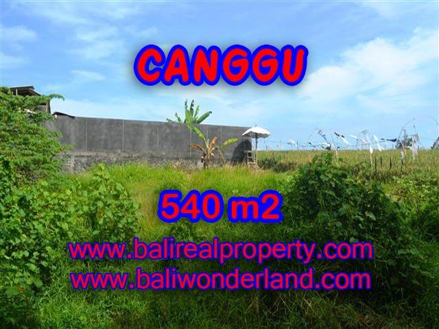 TANAH DI CANGGU MURAH DIJUAL TJCG131 - INVESTASI PROPERTY DI BALI