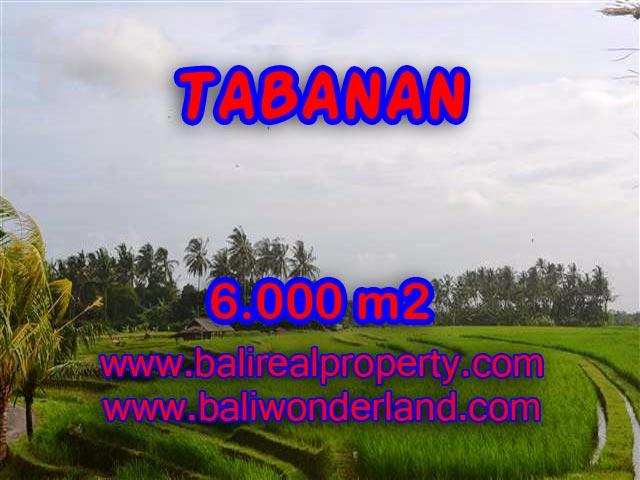 TANAH DI BALI, MURAH DIJUAL DI TABANAN TJTB093