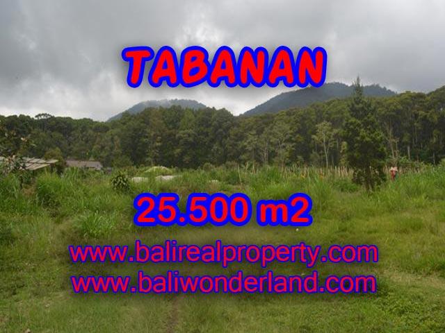 MURAH ! DIJUAL TANAH DI TABANAN BALI TJTB085
