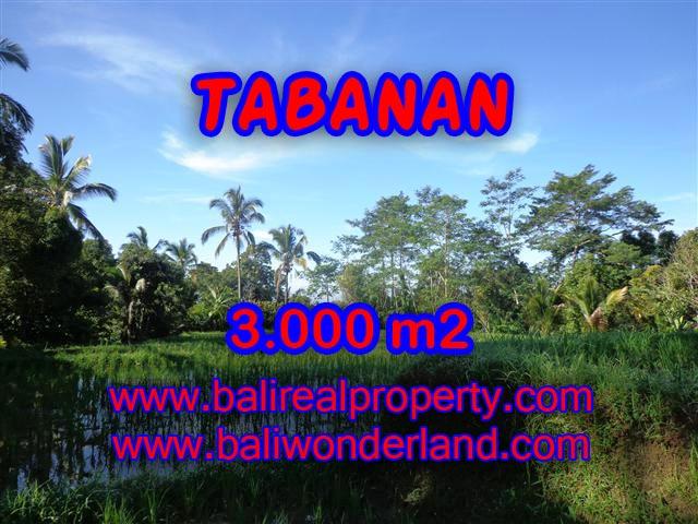 INVESTASI PROPERTI DI BALI - DIJUAL TANAH DI TABANAN BALI CUMA RP 170.000 / M2