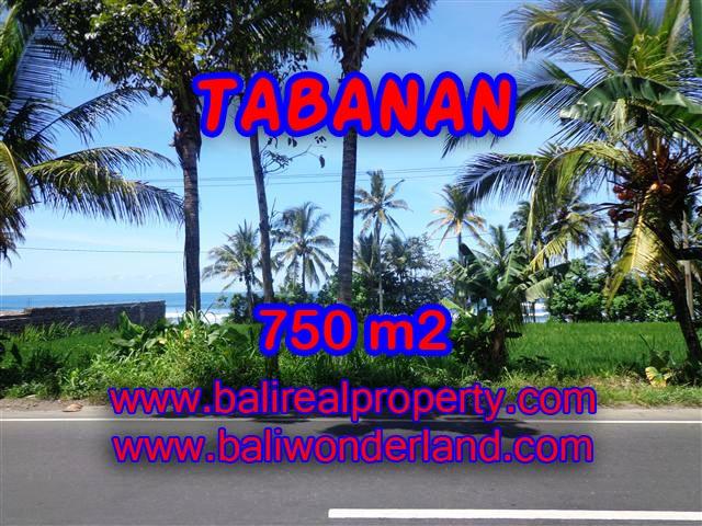 TANAH DI TABANAN MURAH DIJUAL TJTB105 - INVESTASI PROPERTY DI BALI