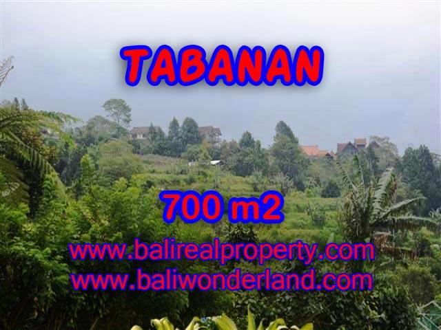 DIJUAL TANAH DI TABANAN MURAH TJTB103 - INVESTASI PROPERTY DI BALI