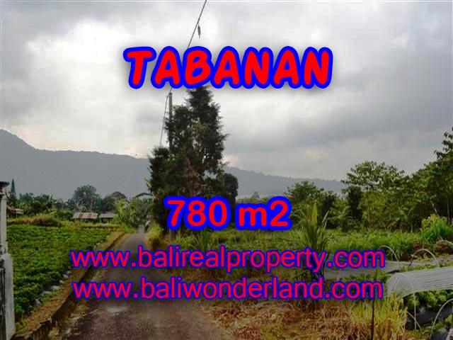 MURAH ! TANAH DI TABANAN BALI TJTB100 - INVESTASI PROPERTY DI BALI