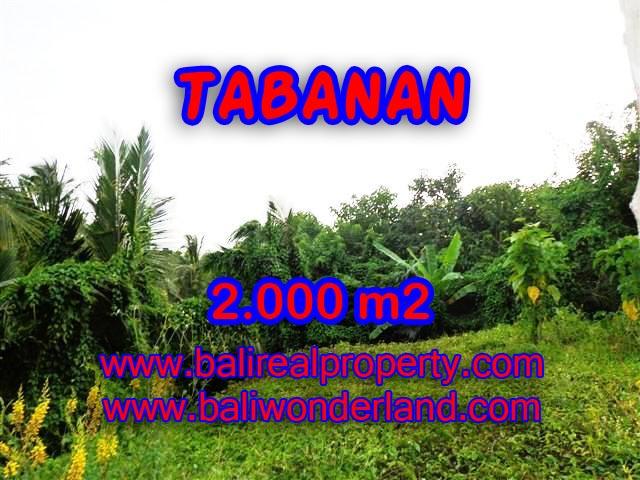 DIJUAL MURAH TANAH DI TABANAN TJTB099 - PELUANG INVESTASI PROPERTY DI BALI