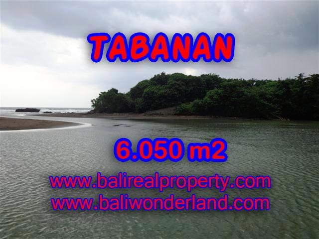 DIJUAL TANAH MURAH DI TABANAN TJTB098 - PELUANG INVESTASI PROPERTY DI BALI