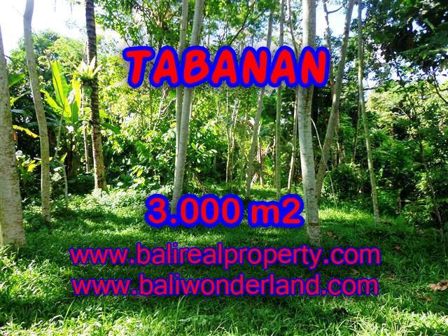 INVESTASI PROPERTI DI BALI - TANAH DI TABANAN BALI DIJUAL CUMA RP 220.000 / M2