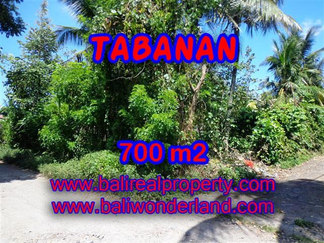 PELUANG INVESTASI PROPERTI DI BALI - TANAH DI TABANAN DIJUAL TJTB107