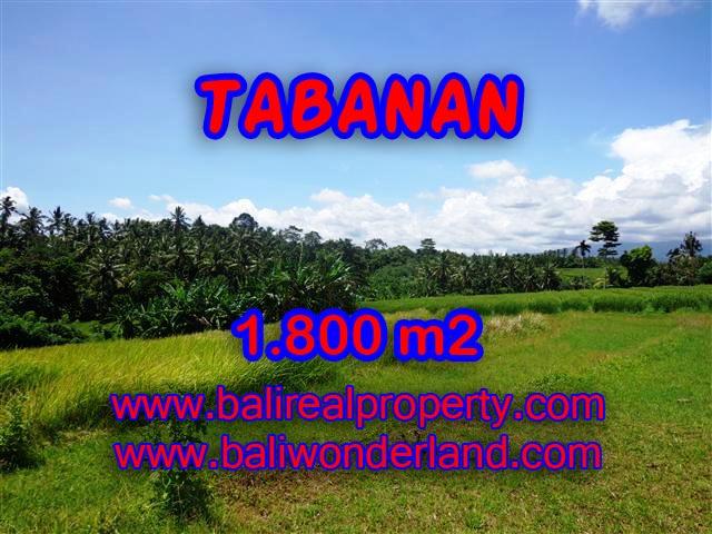 Jual Tanah murah di TABANAN TJTB106 - investasi property di Bali