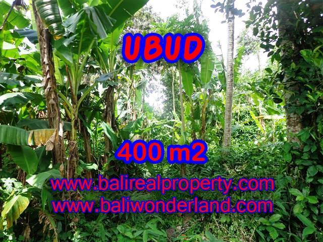 TANAH DI BALI, MURAH DI UBUD DIJUAL TJUB371 - INVESTASI PROPERTY DI BALI