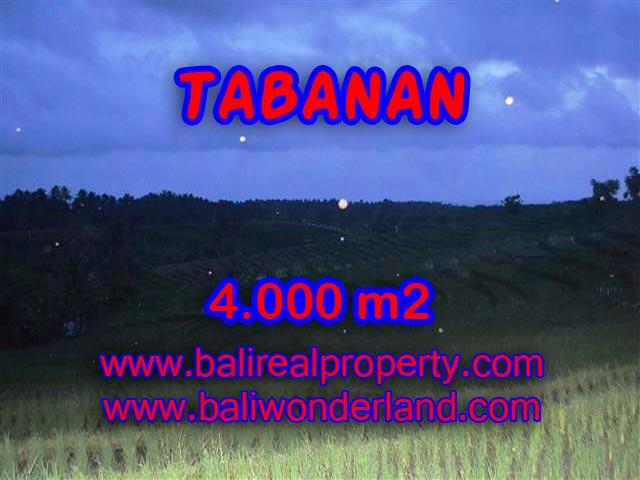 INVESTASI PROPERTI DI BALI - TANAH DIJUAL DI TABANAN BALI TJTB096
