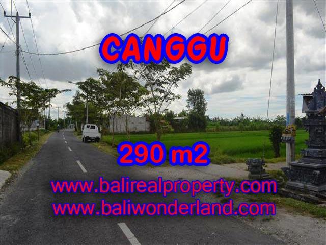 JUAL TANAH DI CANGGU BALI MURAH RP 3.950.000 / M2 - TJCG141