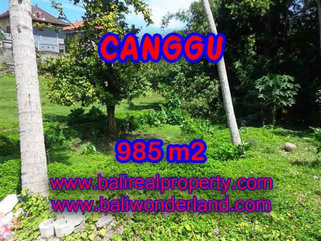 DIJUAL TANAH MURAH DI CANGGU TJCG147 - KESEMPATAN INVESTASI PROPERTY DI BALI