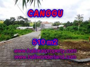 MURAH ! TANAH DIJUAL DI CANGGU BALI TJCG150 - INVESTASI PROPERTY DI BALI