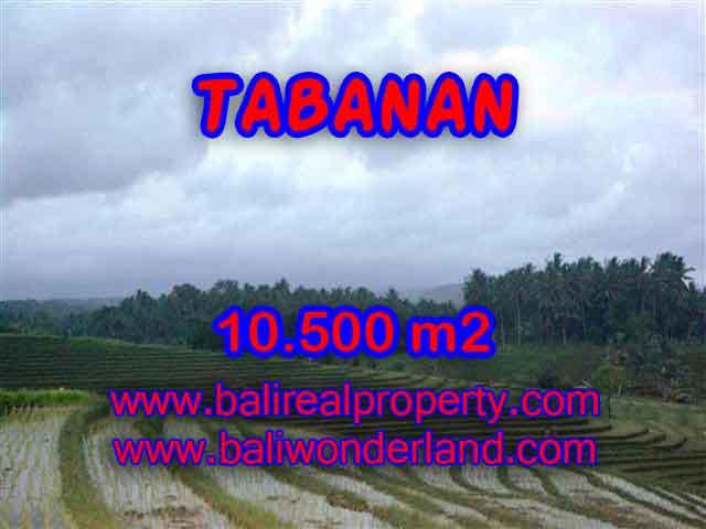 MURAH ! DIJUAL TANAH DI TABANAN TJTB095 - PELUANG INVESTASI PROPERTY DI BALI