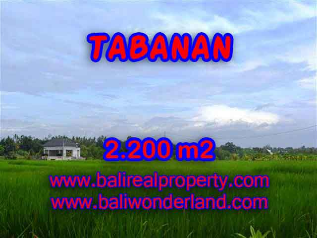 INVESTASI PROPERTI DI BALI - JUAL MURAH TANAH DI TABANAN BALI TJTB097