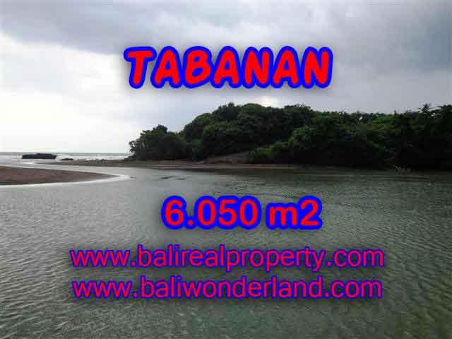 INVESTASI PROPERTI DI BALI - TANAH MURAH DIJUAL DI TABANAN BALI TJTB098