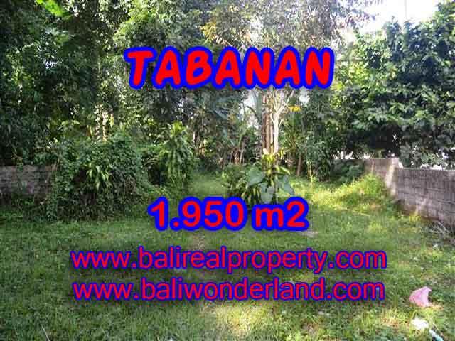 DIJUAL MURAH TANAH DI TABANAN BALI TJTB130 - PELUANG INVESTASI PROPERTY DI BALI