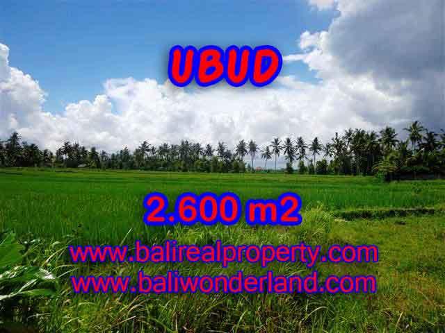 TANAH DI UBUD MURAH DIJUAL TJUB374 - INVESTASI PROPERTY DI BALI